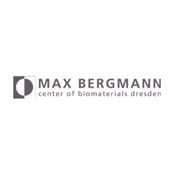 Max Bergmann