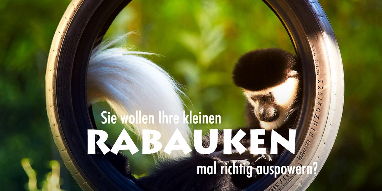 Mit Bildern aus dem Dresdner Zoo wird die Kommunikationsmechanik nahbar und damit rund.